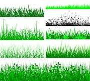 Grass fringes Royalty Free Stock Image