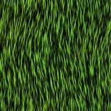 Grass fur seamless generated texture Royalty Free Stock Photography