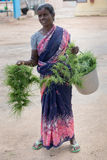 Grass for Ganesha sold be woman. Royalty Free Stock Photography