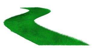 grass gazon Obrazy Royalty Free