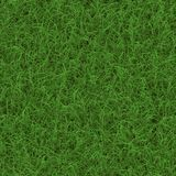 Grass generated seamless texture Stock Photography
