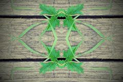 grass geometry figure reflection shapes symbol logo on wooden bo
