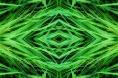 grass geometry shape reflection shapes symbol logo. ecology, health, green energy concept.