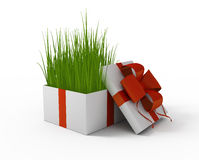 Grass in a gift box Royalty Free Stock Photos