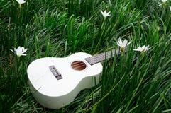 grass gitarę Zdjęcie Stock