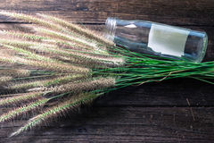 Grass and glass bottle on old wooden Royalty Free Stock Image