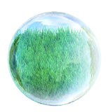 Grass in glass bubble Stock Photo