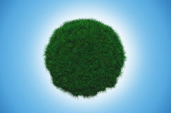 Grass globe Royalty Free Stock Image