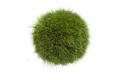 Grass Globe Stock Photography