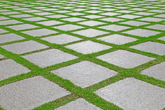 Grass between granite stones pathway in garden Stock Image