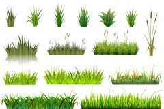 Free Grass Grassland Or Grassplot And Green Grassy Field Illustration Gardening Set Floral Plants In Garden Isolated On White Royalty Free Stock Photos - 152429848
