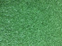 Grass. Green grass background Stock Photos
