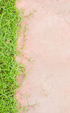 Grass Green Background Texture Pattern Royalty Free Stock Image