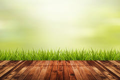 Grass with green blurred background and wood floor Stock Photography