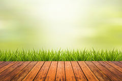Grass with green blurred background and wood floor Stock Photos