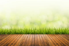 Grass with green blurred background and wood floor Royalty Free Stock Photo