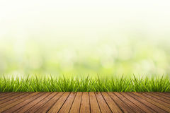 Grass with green blurred background and wood floor. Fresh spring grass with green nature blurred background and wood floor Royalty Free Stock Photo