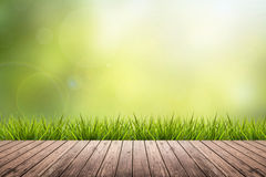 Grass with green blurred background and wood floor Royalty Free Stock Photos