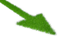 Grass green pointer Royalty Free Stock Photography