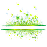 Grass green, summer background Stock Photography
