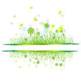 Grass Green, Summer Background Stock Photography