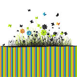 Grass green, summer background Royalty Free Stock Image