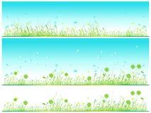 Grass green, summer background Stock Photos