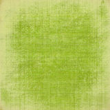Grass green textured background Stock Photography