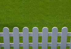 Grass is Greener Stock Photo
