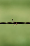 The grass is greener on the other side. Rusty barbed wire (This image contains a clipping path stock image