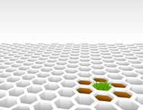 Grass growing from 3D hexagon shapes Stock Photo