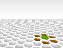 Grass growing from 3D hexagon shapes. Grass growing from 3D hexagon shape mesh background Stock Photo