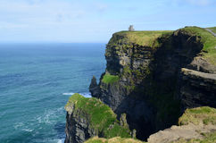 Grass Growing along the Cliff`s of Moher in Ireland Royalty Free Stock Photography