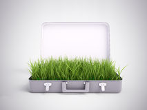 Grass growing out of a suitcase Royalty Free Stock Photography