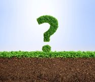 Grass growth environment question concept Royalty Free Stock Images
