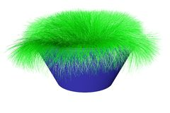 The grass grows. In a dark blue pot Royalty Free Stock Image