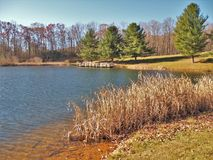 Ashe Park Trout Pond in Jefferson, North Carolina. Grass grows in the edge of this small pond found in Ashe County Park in Jefferson, North Carolina stock photography