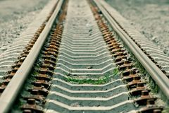 Grass grows on rails- green toned version Royalty Free Stock Image