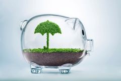 Grass growth protection investment concept. Nature is shelter concept. Grass growing in the shape of an umbrella, inside a transparent piggy bank, symbolising Royalty Free Stock Photography