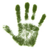 Grass hand print Stock Image