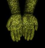 Grass hands Stock Photos