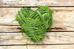 Grass heart Stock Photos