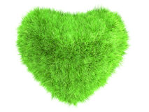 Grass heart Royalty Free Stock Photography