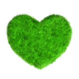 Grass heart isolated on white Royalty Free Stock Photo