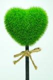 Grass heart Stock Photography