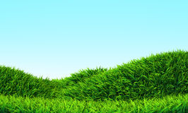 Grass Hill. And clear sky stock illustration
