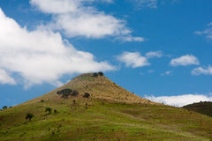 Grass hill. The small hill in South Africa grassland Stock Photo