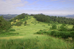 Grass hill with trees ontop of Mount Pisgah Stock Images