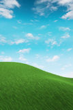 Grass on hilly meadow. Vertical 3d render Royalty Free Stock Photo