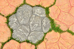 Grass in the holes of brick pattern Royalty Free Stock Images